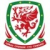 Wales drakter barn